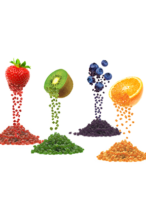 Manufacturer of Food Processing Dyes Pigments